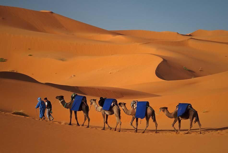 Merzouga: The Unknown Desert Pearl